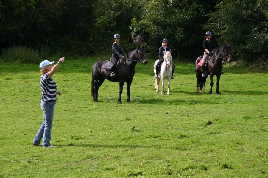Reitferien in Irland Slieve Aughty Riding Centre